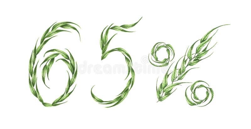 65%文本,从绿色叶子的百分之六十五 额嘴装饰飞行例证图象其纸部分燕子水彩 皇族释放例证