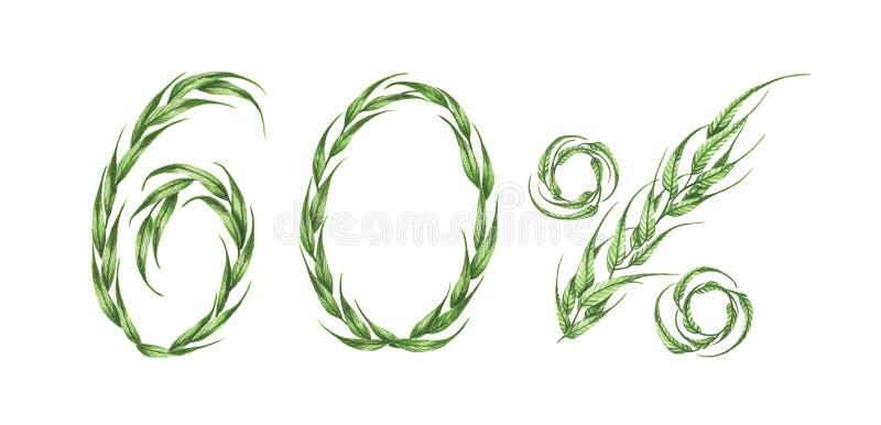 60%文本,从绿色叶子的百分之六十 额嘴装饰飞行例证图象其纸部分燕子水彩 向量例证