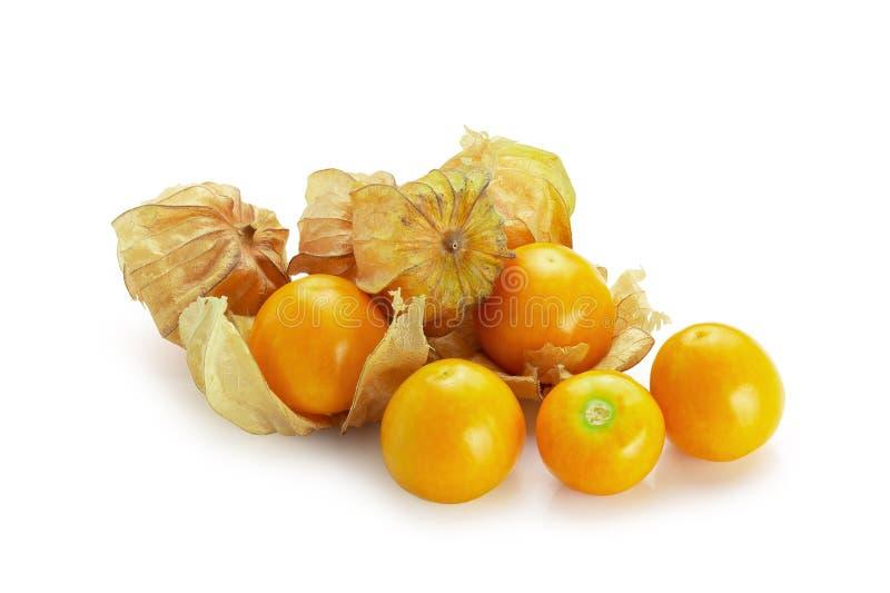 灯笼果,空泡果子或金黄莓果被隔绝在白色背景 库存图片