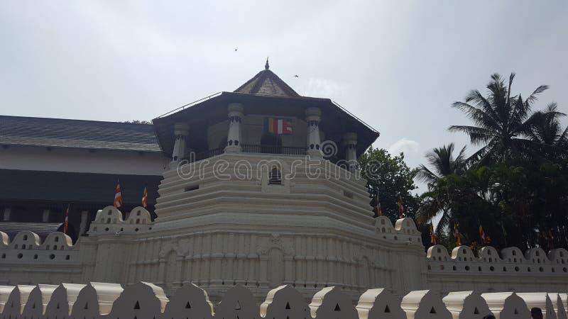 神圣的牙遗物的寺庙在康提,斯里兰卡 库存图片