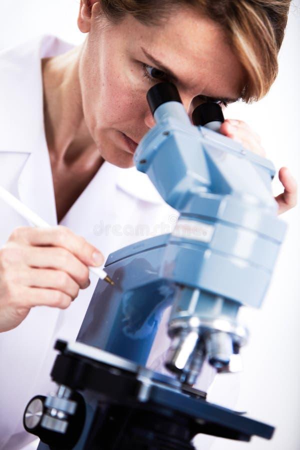 科学家与显微镜一起使用 库存照片