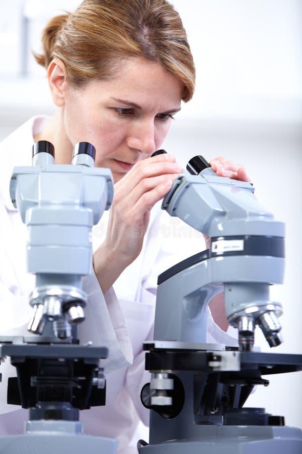 科学家与显微镜一起使用 免版税图库摄影