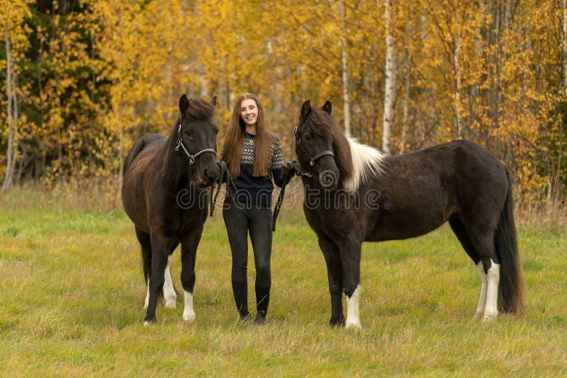 秋天彩色场的年轻瑞典妇女与她的两匹冰岛马 免版税图库摄影