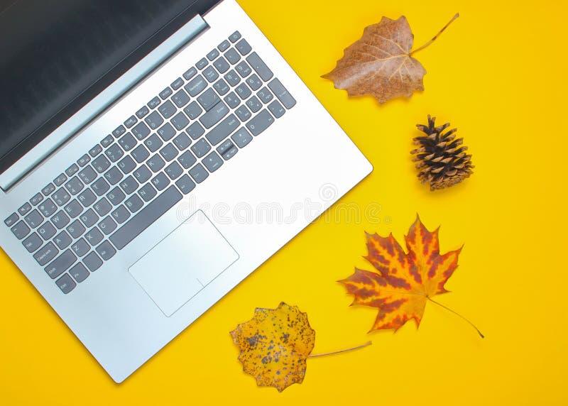 秋天冬天企业静物画 膝上型计算机,落叶 免版税图库摄影