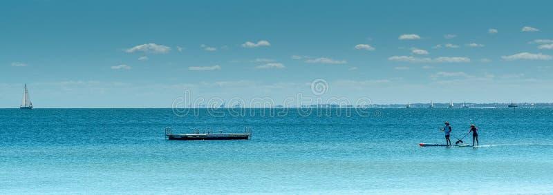 站立轧布机的桨房客咆哮与浮船和游艇的Rockingham在 库存图片