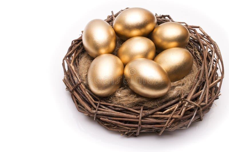 筑巢用在白色背景的金黄鸡蛋 怂恿金黄嵌套 库存图片