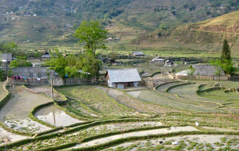 米大阳台在一个村庄在Sapa 库存照片