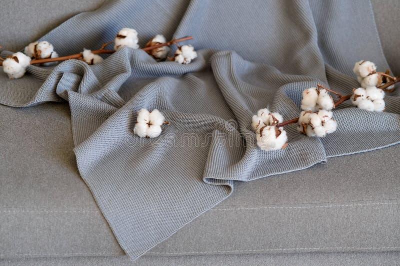 精美棉花花纺织品衣裳 有机棉花衣物想法 库存图片