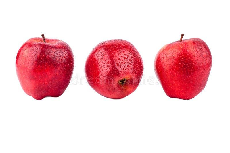 红色在白色背景被隔绝的关闭的苹果另外侧视图宏指令 库存照片