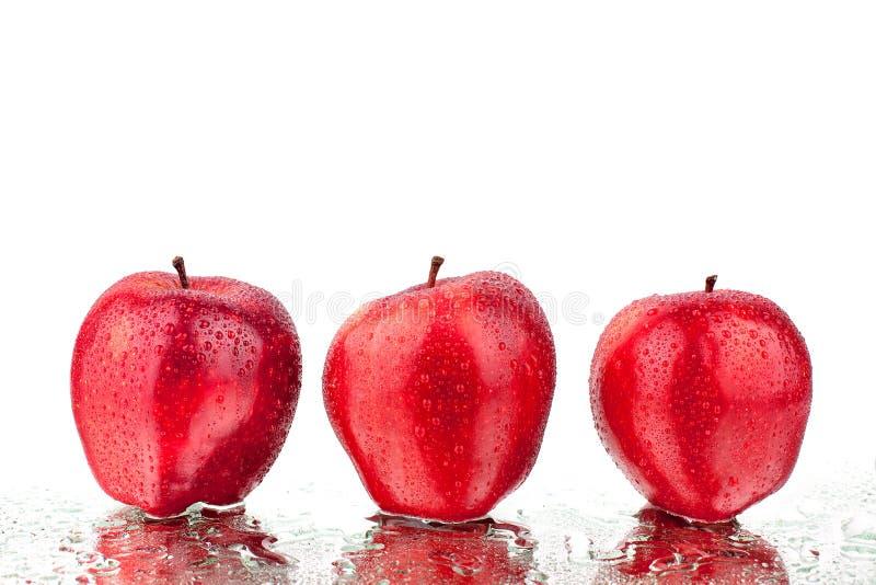 红色在白色背景被隔绝的关闭的苹果另外侧视图宏指令 库存图片