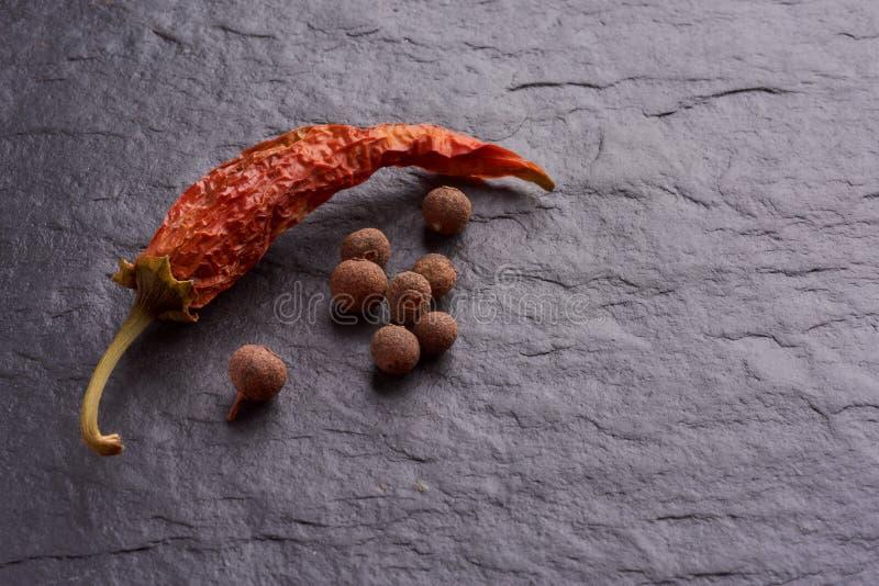 红色智利pepperlonely烘干了红辣椒和香料 免版税库存照片