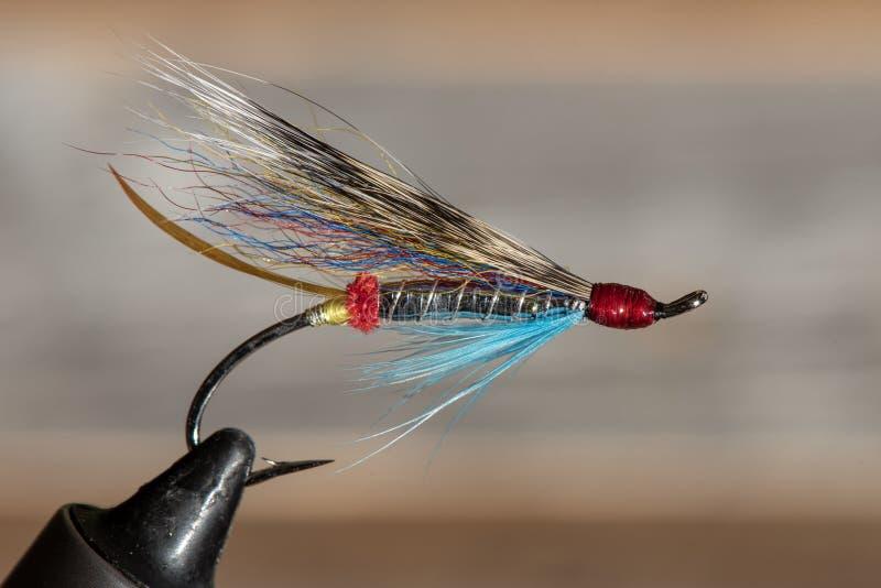 经典和五颜六色的大西洋三文鱼钓鱼的湿飞行 免版税库存照片