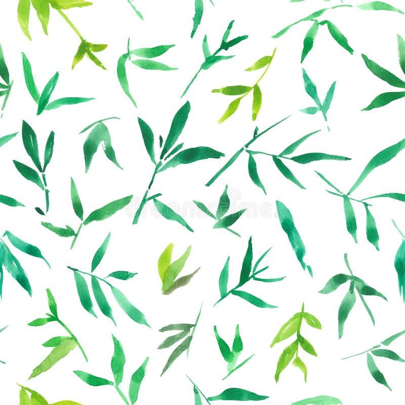 绿色竹叶子无缝的样式水彩,绘的植物例证 向量例证