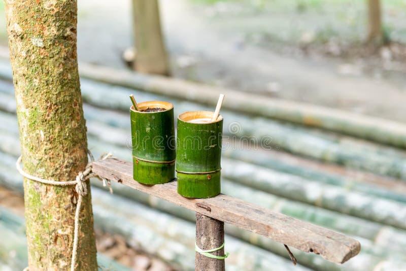 绿色竹圆筒咖啡,茶杯,从竹子的自然产品,有山景背景 库存照片