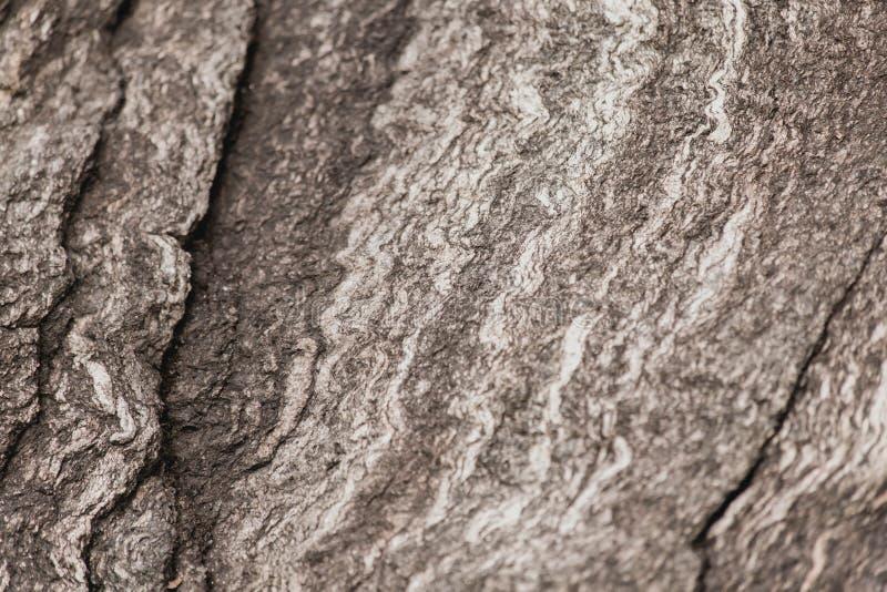 织地不很细抽象石头 库存图片