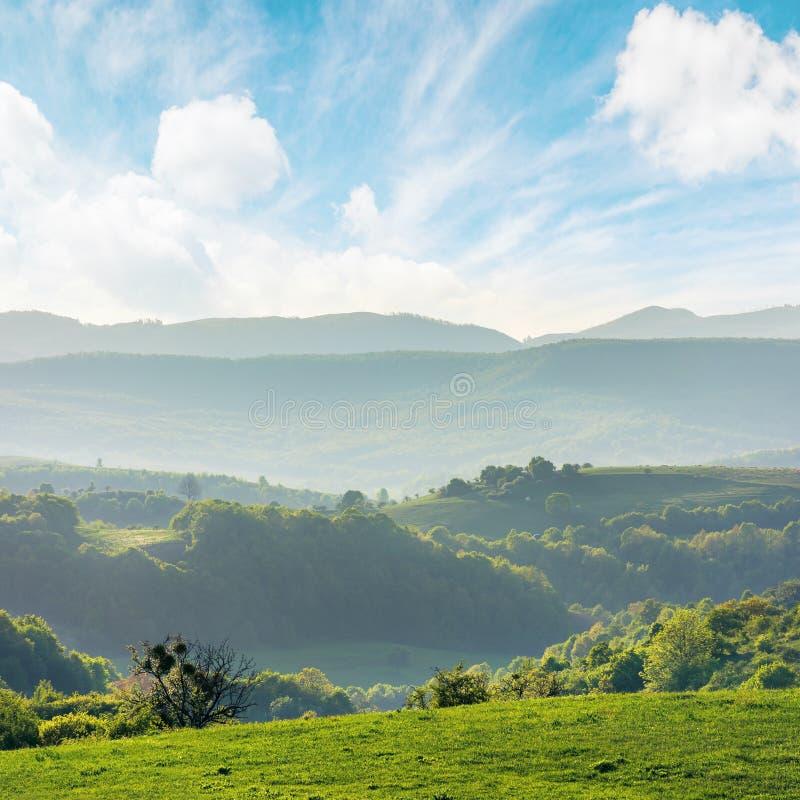 罗马尼亚乡下绿色绵延山  免版税图库摄影
