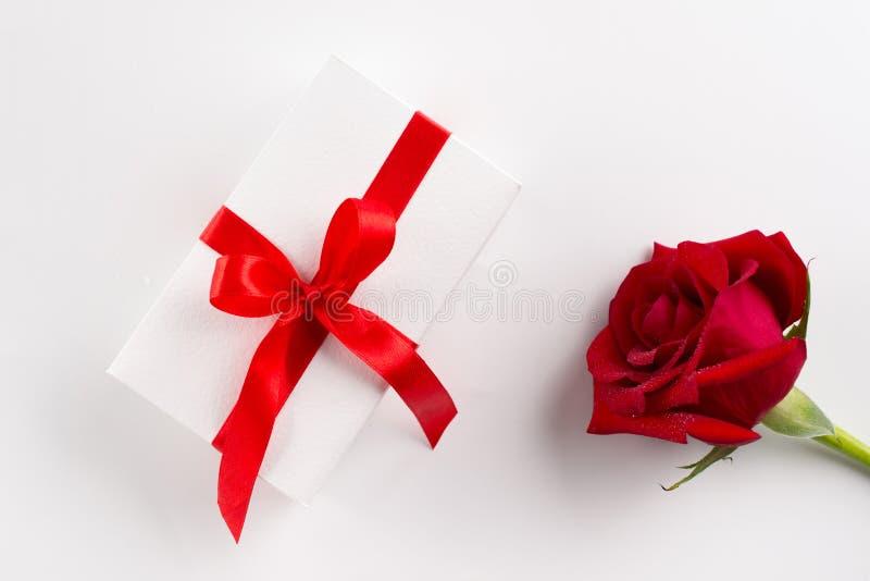美丽的芽天鹅绒红色玫瑰色花和白色礼物盒有红色丝带的在白色 免版税库存照片
