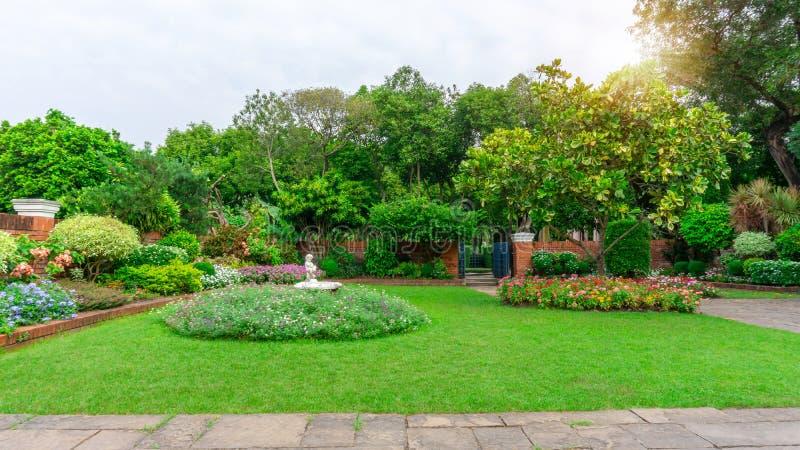 美丽的英国村庄庭院,光滑的绿草草坪的五颜六色的开花植物在好关心后院 免版税库存图片