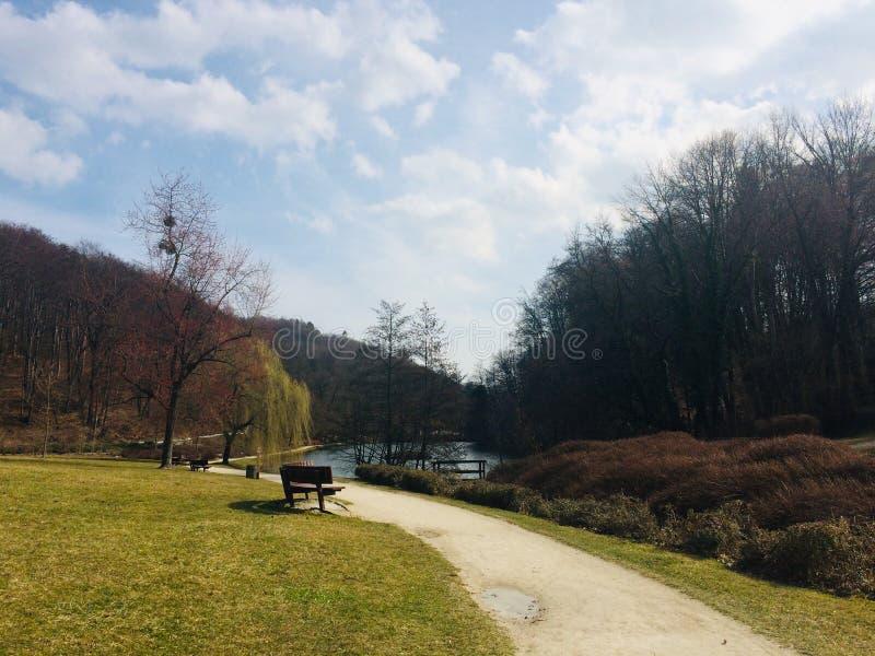 美丽& x22;Mestni park& x22;在马里博尔,斯洛文尼亚 库存照片