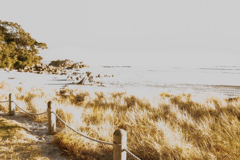 美术的作用海滩场面草、沙子和岩石 图库摄影