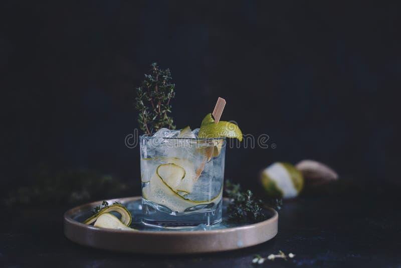 石灰和新鲜薄荷鸡尾酒用汁液、冷的夏天柑橘刷新的饮料或者饮料与冰 免版税图库摄影