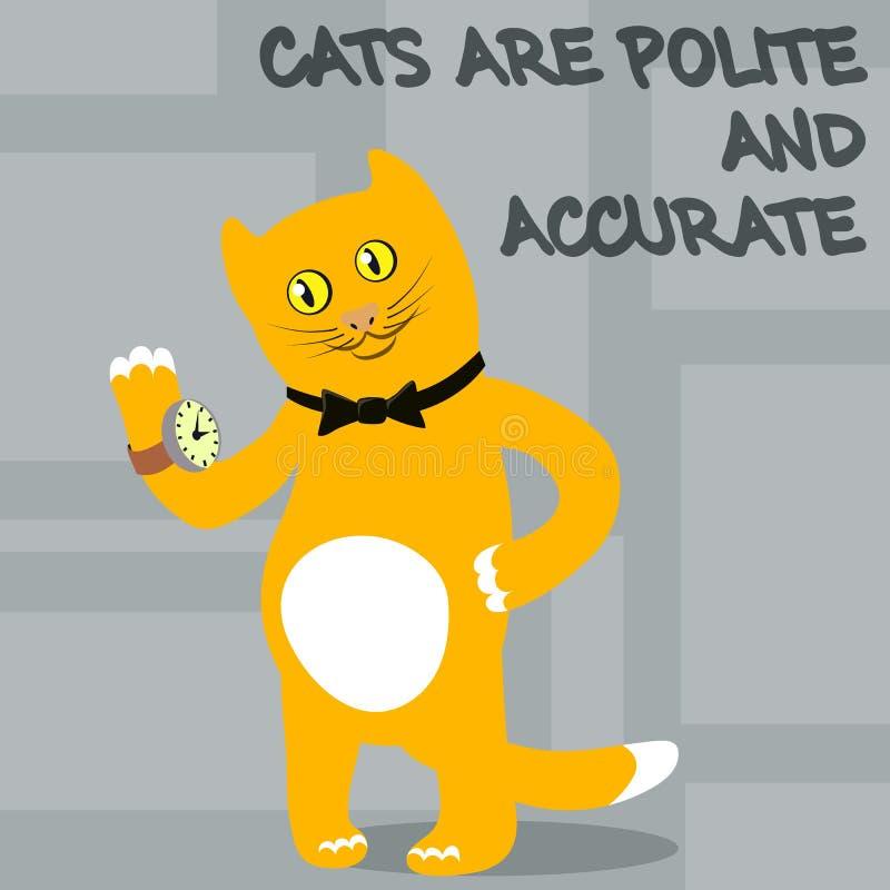 猫是礼貌,准确和整洁的 向量 向量例证
