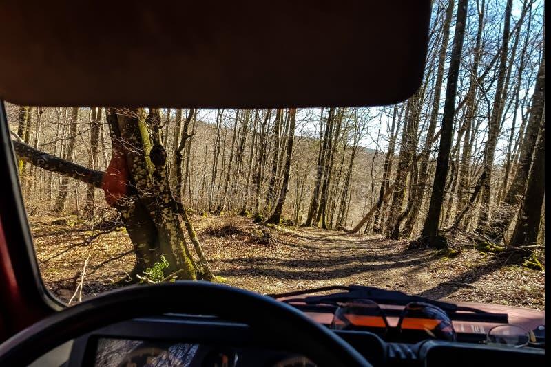 看法通过汽车的挡风玻璃在一个不通的森林和一条被放弃的路的 免版税库存照片