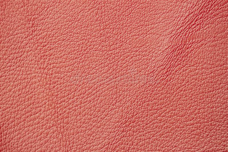 皮革纹理,背景,表面珊瑚橘黄色  库存图片