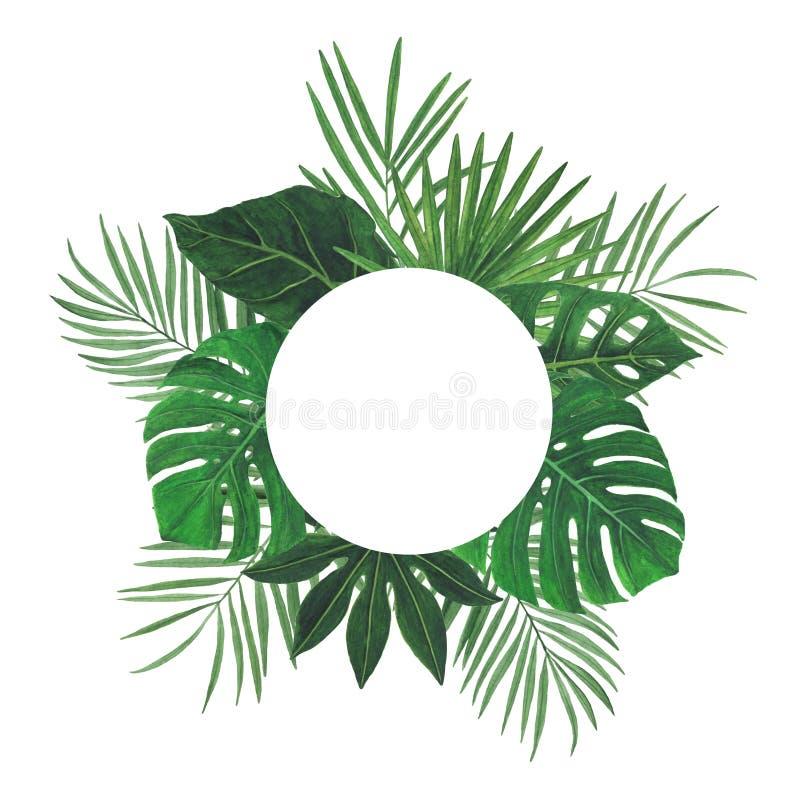 热带花叶子水彩框架例证植物的春天装饰设计贺卡邀请 图库摄影