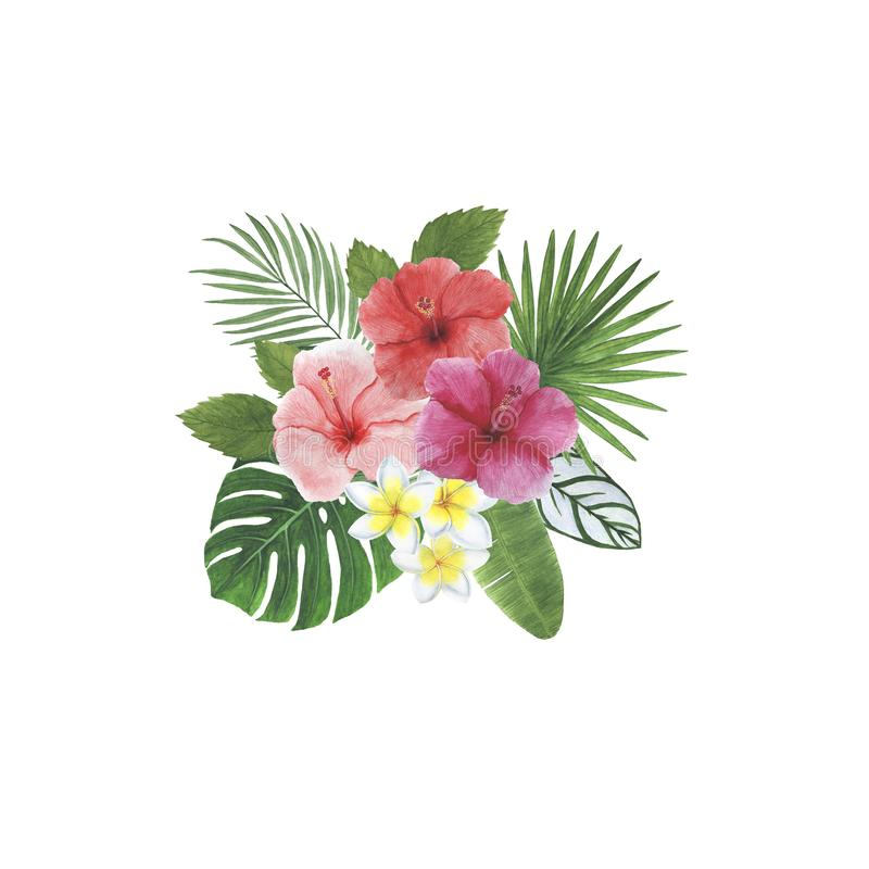 热带花叶子木槿羽毛Monstera棕榈水彩框架例证植物的春天装饰设计问候 免版税库存照片