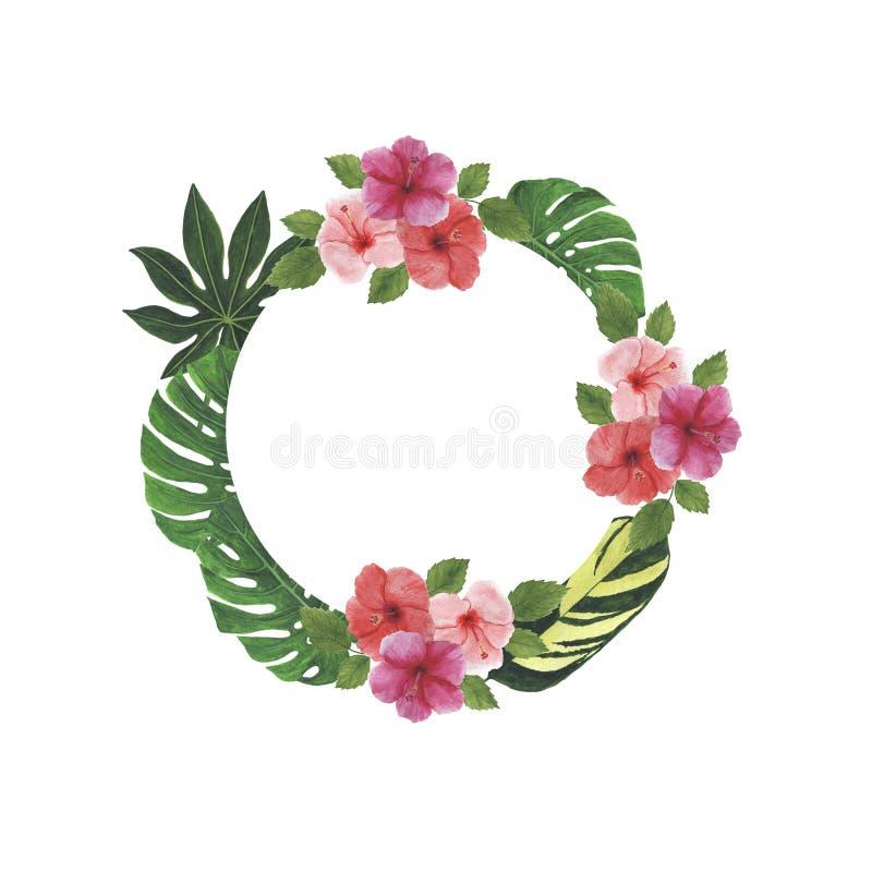 热带花叶子木槿羽毛Monstera棕榈水彩框架例证植物的春天装饰设计问候 免版税库存图片