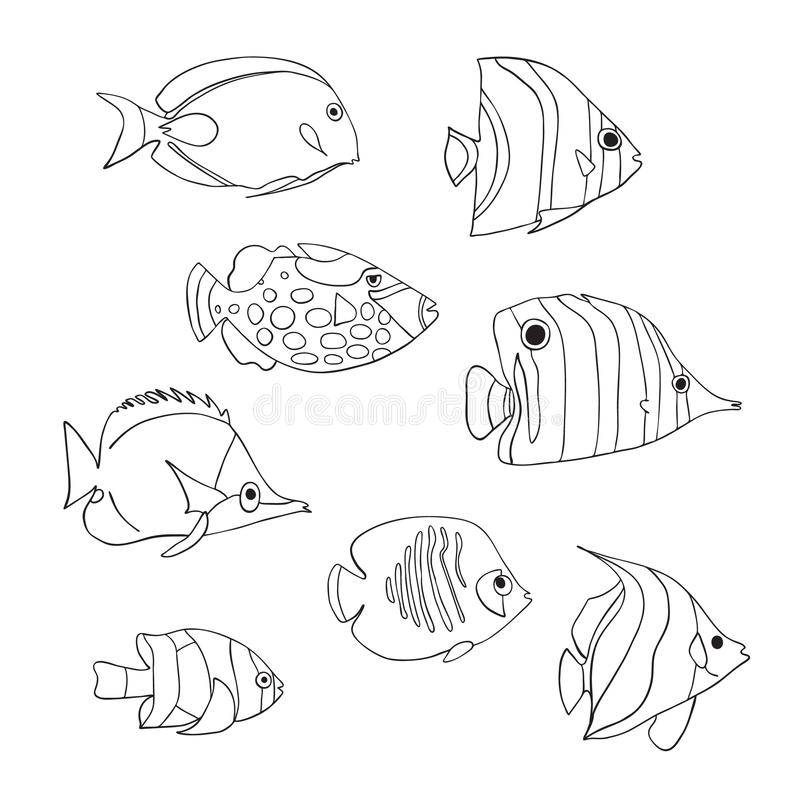 热带鱼象集合 向量查出的字符 蝴蝶鱼,小丑引金鱼,年轻女人,Anemonefish,神仙鱼,Clownfish 皇族释放例证