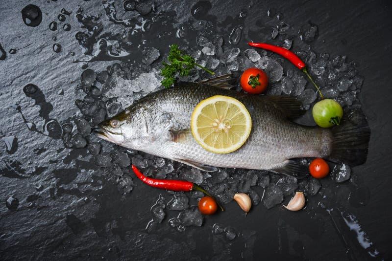 烹调/未加工的雪鱼的新鲜的鲈鱼鱼在冰用草本和香料 免版税库存图片