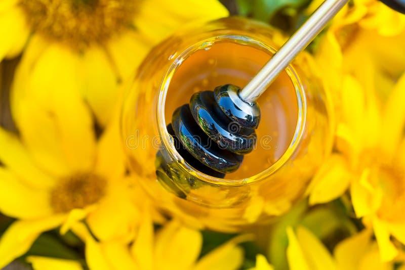 瓶子特写镜头充分用蜂蜜和蜂蜜匙子在向日葵中间 图库摄影
