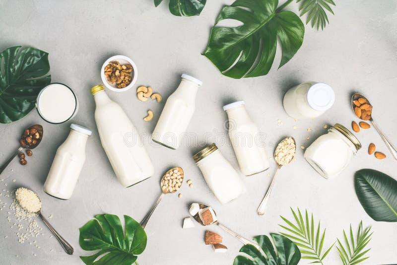 牛奶店自由牛奶替代品饮料和成份 免版税图库摄影