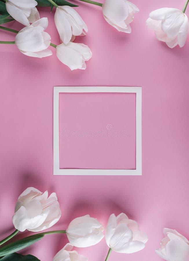白色郁金香花和纸片在浅粉红色的背景的 卡片为母亲节,复活节快乐3月8日, 等待的春天 免版税库存图片