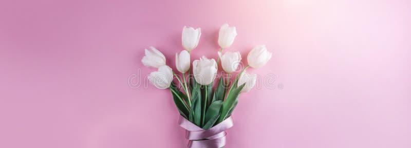 白色郁金香花花束在桃红色背景的 卡片为母亲节,复活节快乐3月8日, 等待的春天 库存图片