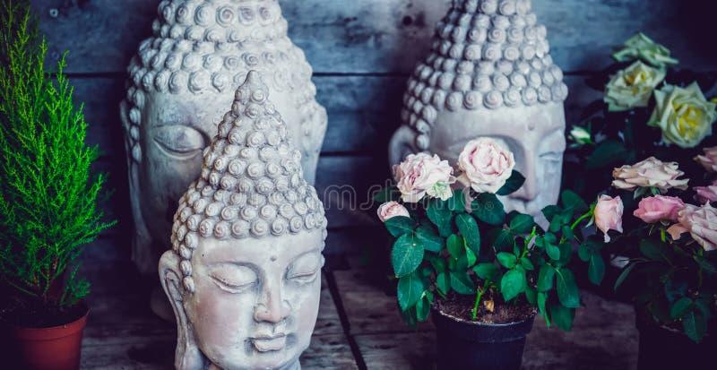 紧密石在花中的少量菩萨头雕象在木背景的罐 外部,公园,室外庭院装饰 库存照片