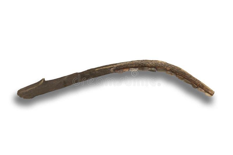 用燧石刀片做的新石器时代的镰刀 库存照片