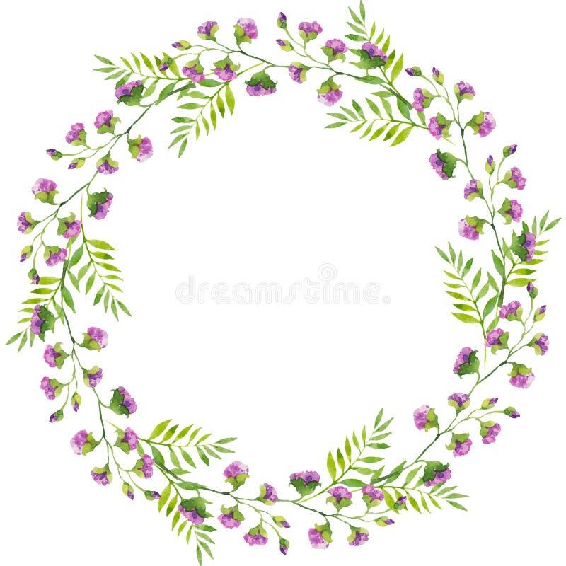 紫罗兰色花和绿色叶子,水彩例证分支明亮的精美花圈  皇族释放例证