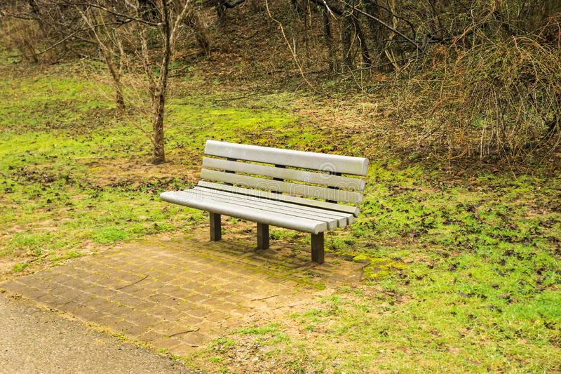 由一条地方林荫道路的公园长椅 免版税库存照片