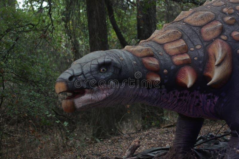甲龙恐龙 库存照片