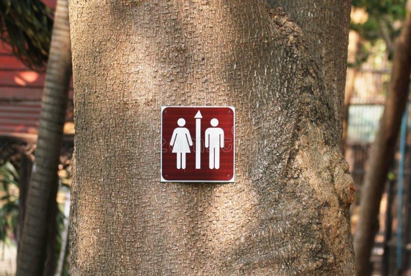 男性和女性的洗手间标志附有大树使用钉子在角落在一个公开自然公园 免版税库存照片