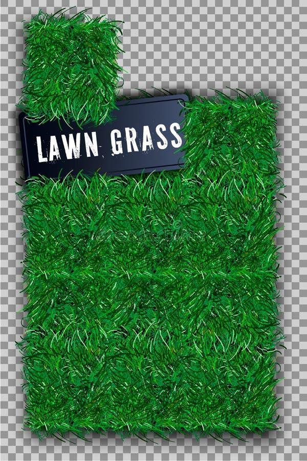 草方形的3D 美好的绿色象草的领域,隔绝在白色透明背景 草坪抽象自然纹理 符号 库存照片