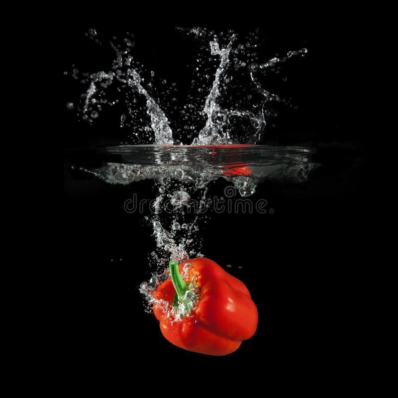 落在与飞溅的水中的红色甜椒在黑背景,辣椒粉,停止运动摄影 免版税库存图片