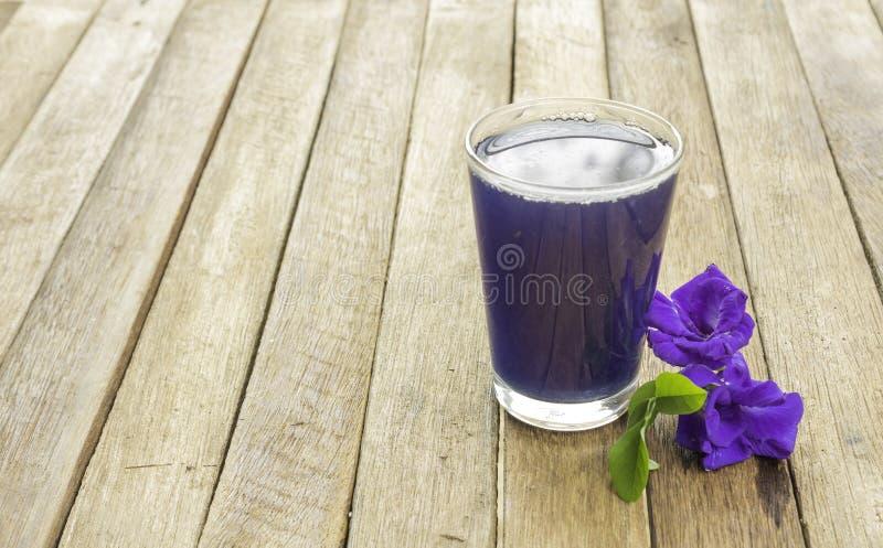 蝴蝶豌豆汁 免版税库存图片