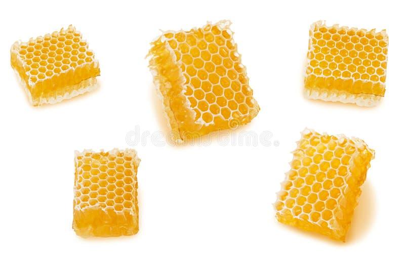 设置与在白色背景和液体自然黄色蜂蜜的蜂窝组成部分隔绝的蜡 免版税库存照片