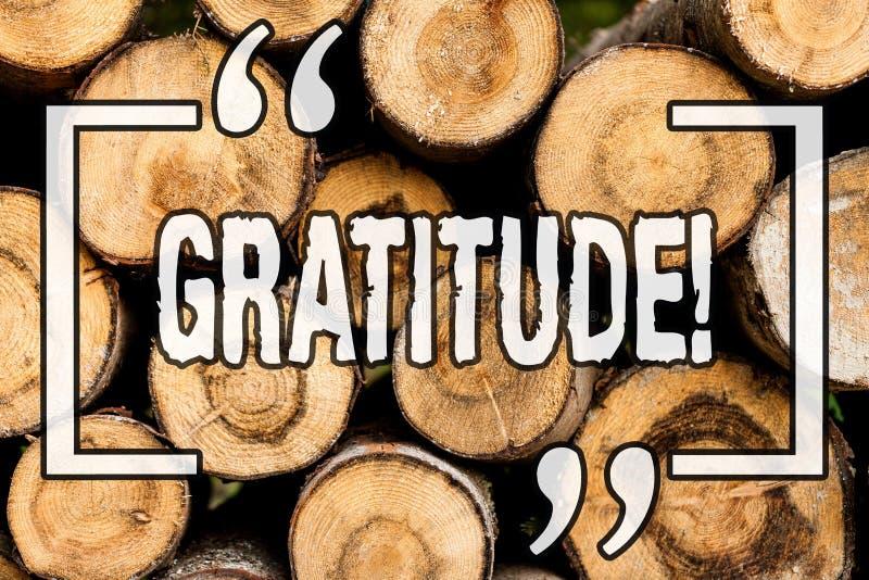 词文字文本谢意 质量的企业概念是感激的欣赏感谢承认木 免版税图库摄影