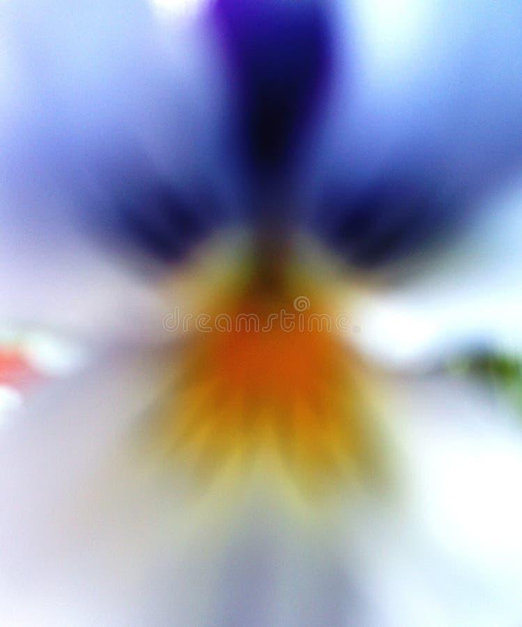 象三色花的中提琴的抽象天使 免版税库存图片