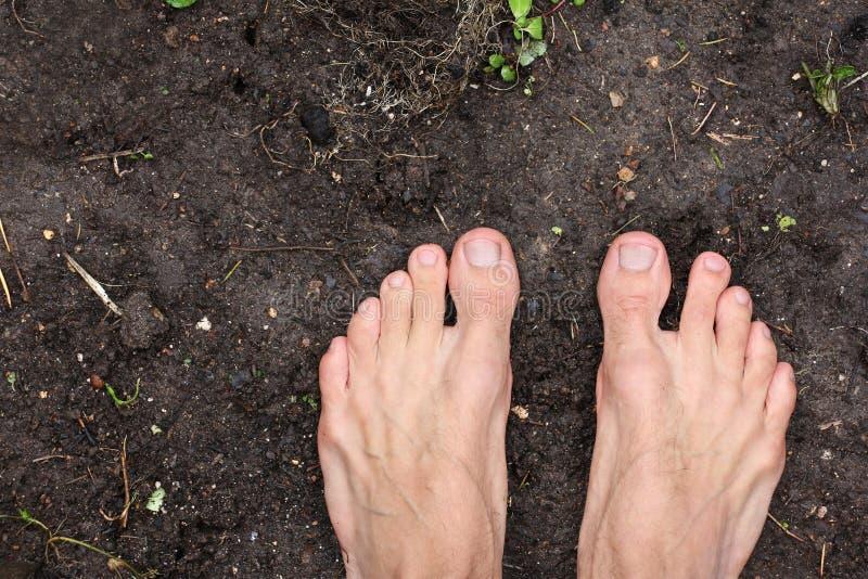 赤足人在空的黑土壤地面在春天,海报站立生态健身的,概念贫穷,顶视图,特写镜头 免版税图库摄影